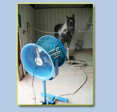 FREESTANDING LIVESTOCK FAN